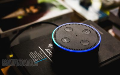 9 Reasons Alexa is Awesome